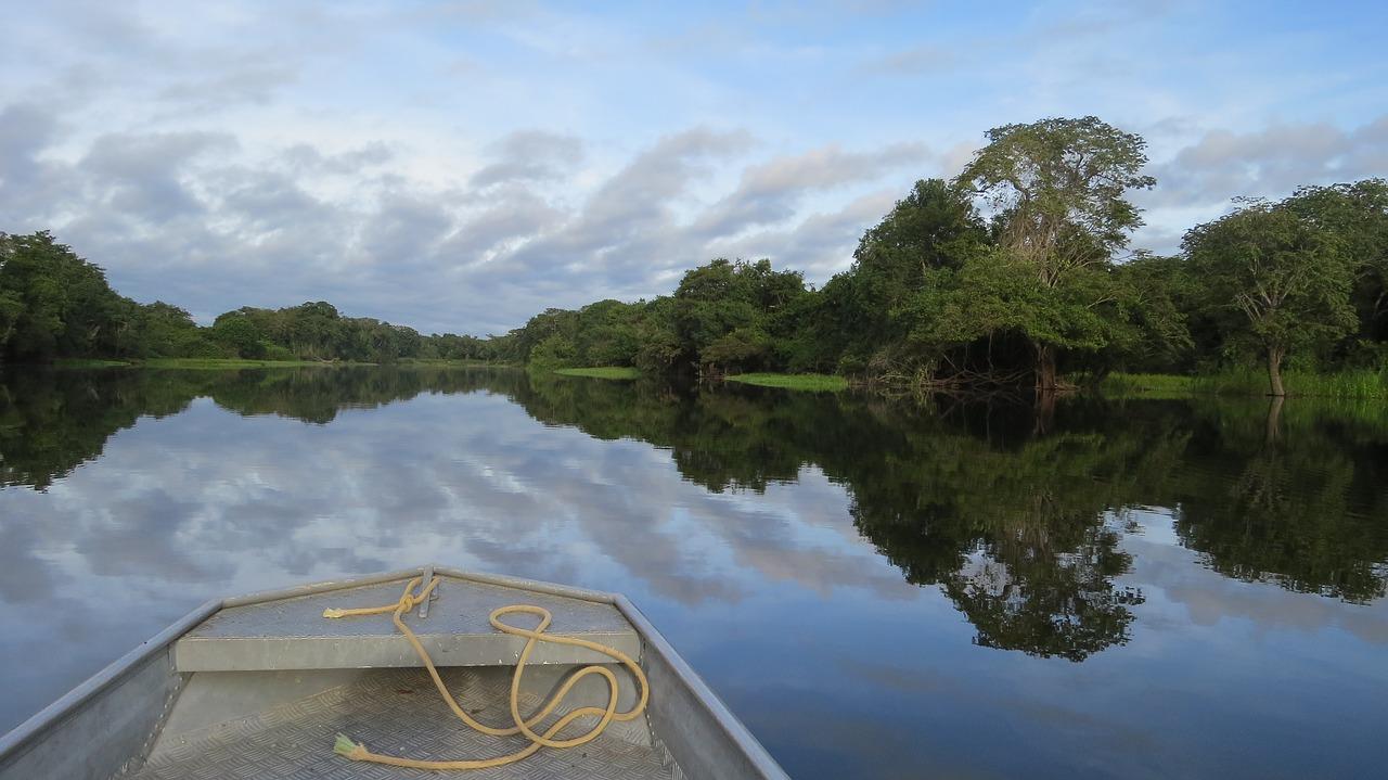 Se utilizan drones para proteger a los delfines del Amazonas